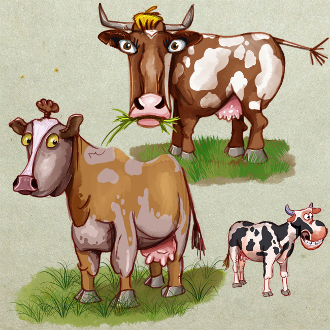 Cows draft
