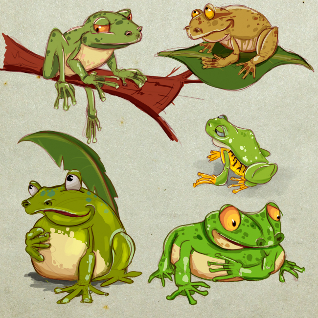 Frogs sketch